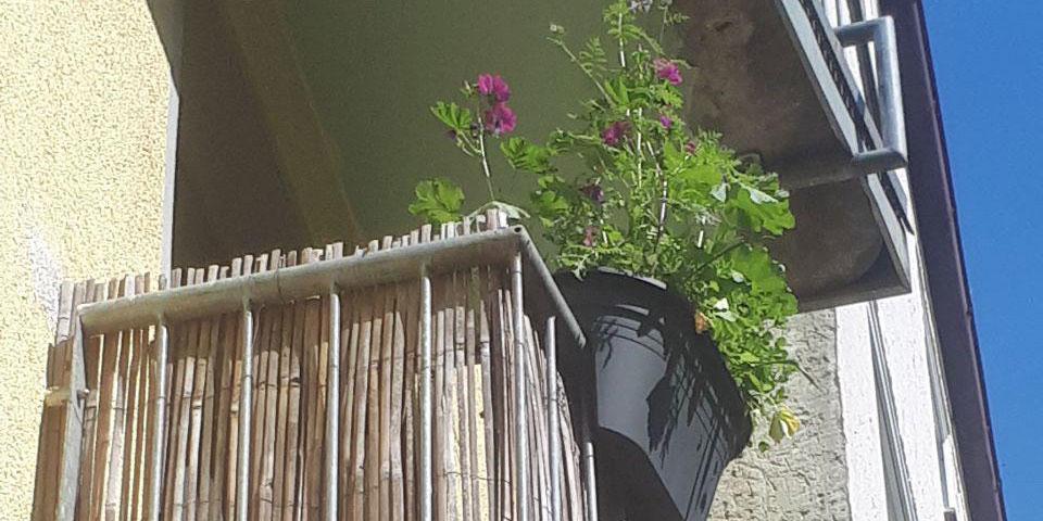 Balkon mit Wildblumen